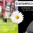 AutoImpuls 2019 Scheidweg-Garage AG