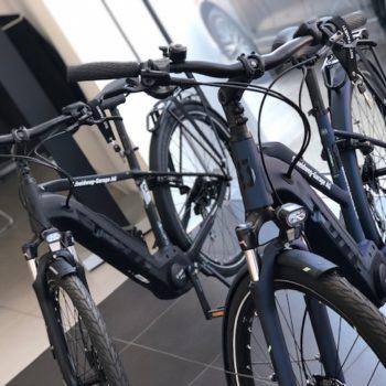 E-Bike Scheidweg-Garage AG
